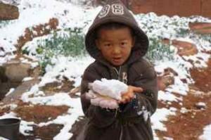 chou-chou-snow
